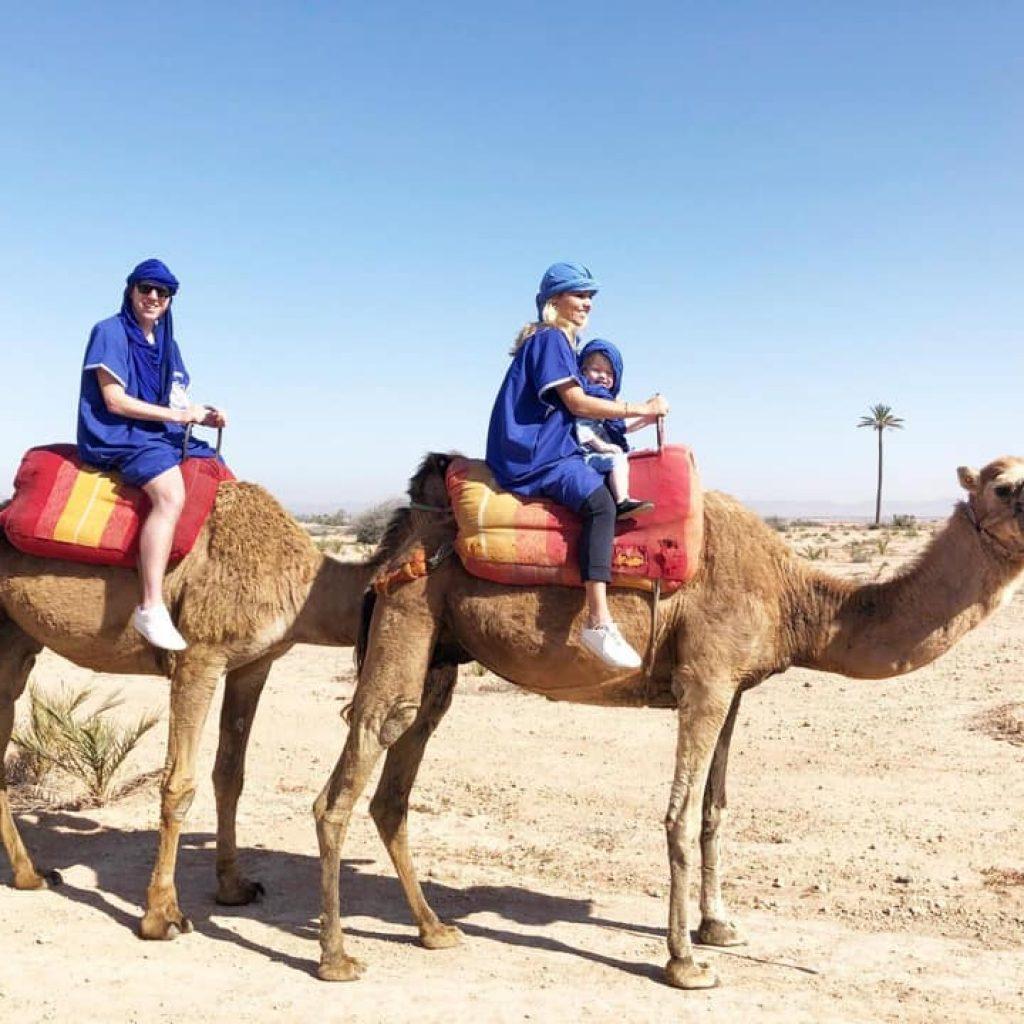 kameel-gezin